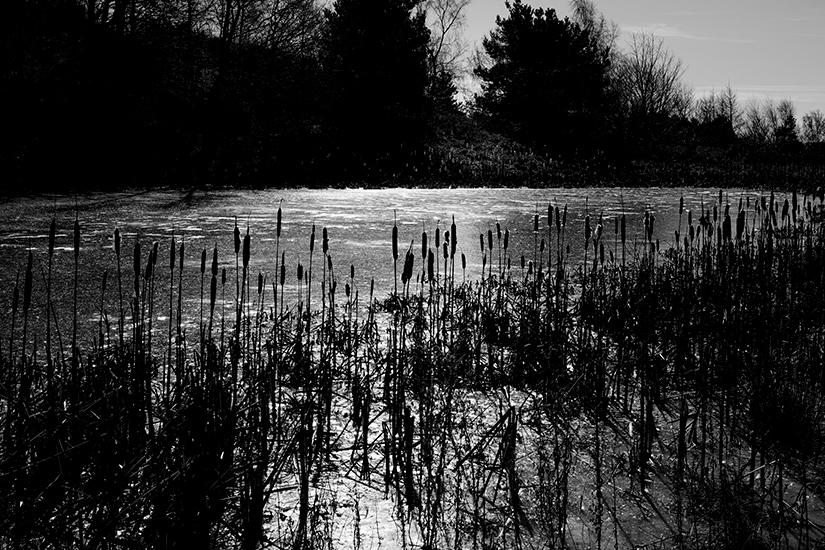 Natur-Mols-marts2018–3-13