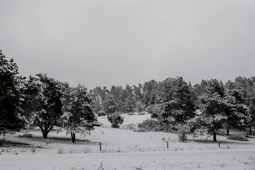 Natur-Mols-marts2018–3
