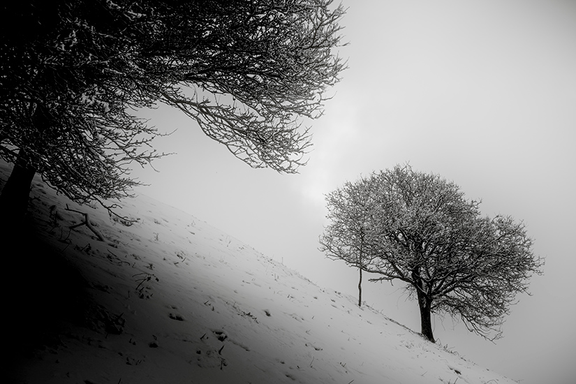 Natur-Mols-marts2018-4
