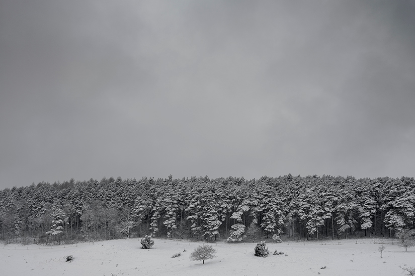 Natur-Mols-marts2018-5