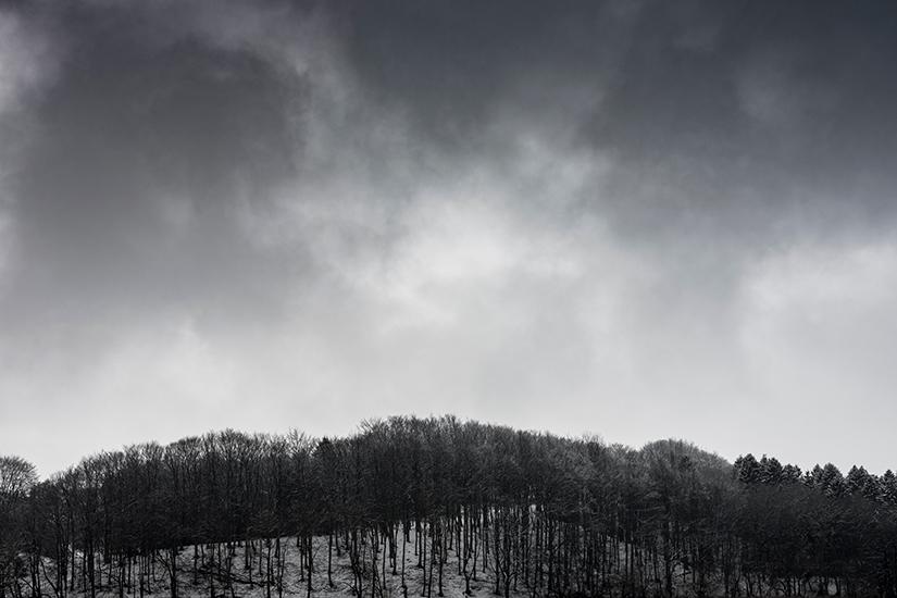 Natur-Mols-marts2018-7