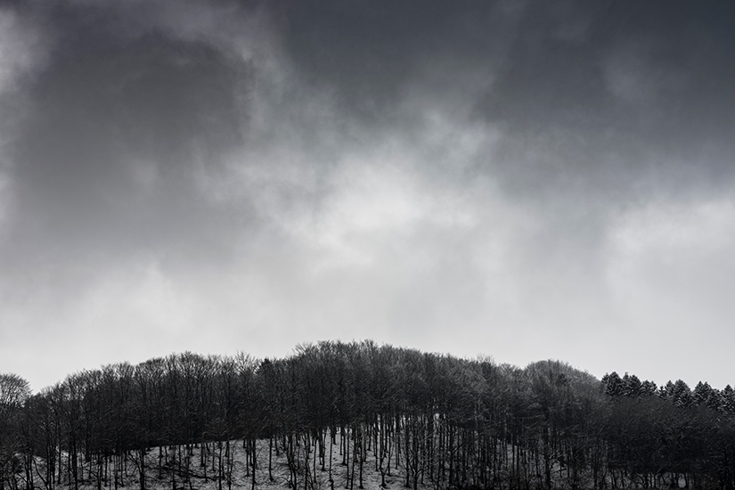 Natur-billeder-MolsBjerge