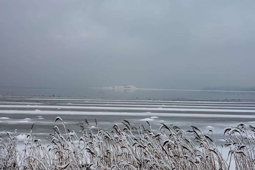 Natur-billeder-sne